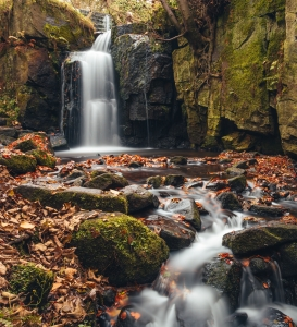 A waterfall in autumn, the rushing water is dotted with golden leaves and mossy rocks as the viewpoint leads the eye up to the waterfall itself.
